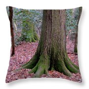 Forest Foundation Throw Pillow