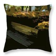 Forest Gump's Bench Throw Pillow