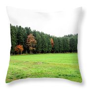 Forest In Bavaria Throw Pillow
