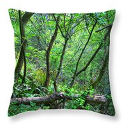Forest In Hdr Throw Pillow