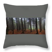 Forest Throw Pillow by Judy  Waller