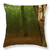 Forest Light 1 Throw Pillow