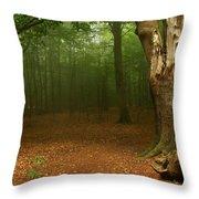 Forest Light 2 Throw Pillow
