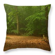 Forest Light 4 Throw Pillow