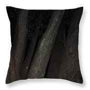 Forest Nightscape Throw Pillow