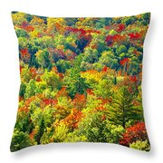Forest Of Color Throw Pillow
