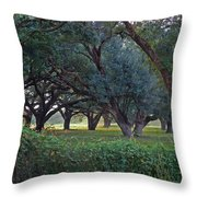 Forest Of Green Bw Throw Pillow