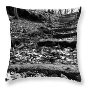 Forest Of Illusion Throw Pillow
