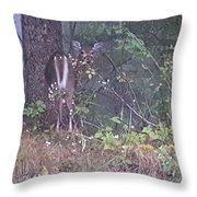 Forest Peek A Boo Throw Pillow