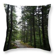 Forest Path At Grafton Notch State Park Throw Pillow