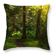 Forest Path Throw Pillow