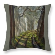 Forest Pathway Throw Pillow