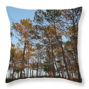 Forest Pine Trees At Sunset Throw Pillow