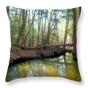 Forest Pool Throw Pillow