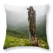Forest Remnant Throw Pillow