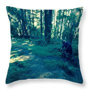Forest Ride Throw Pillow