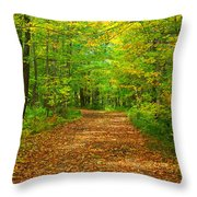 Forest Road In The Fall Throw Pillow