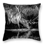 Forest Royal Bull Elk Throw Pillow