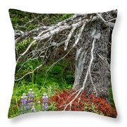 Forest Scene Throw Pillow