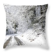Forest Service Road 76 Throw Pillow by Thomas R Fletcher