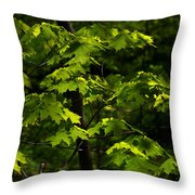 Forest Shades Throw Pillow
