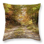 Forest Stone Path Throw Pillow