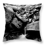Forest Stream In Black And White Throw Pillow
