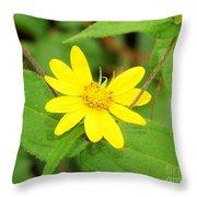 Forest Sunflower Throw Pillow