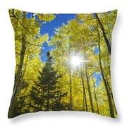 Forest Sunshine Throw Pillow