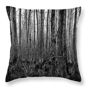 Forest Thru The Trees Throw Pillow