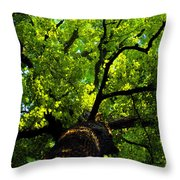Forest Top Throw Pillow