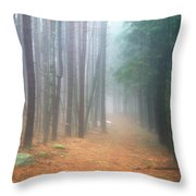 Forest Trail Through Pines Throw Pillow