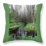 Forest Trees Creek Pathway Throw Pillow