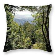 Forest View From Mt Tamalpais Throw Pillow