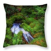Forest  Water Stream. Benmore Botanic Garden Throw Pillow