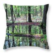 Forest Wetland Throw Pillow