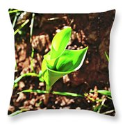 Forest Wildlife Nature Throw Pillow