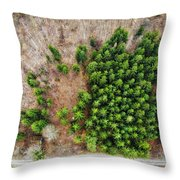 Forest With Green Trees From Above Throw Pillow