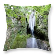 Forest With Waterfall Throw Pillow
