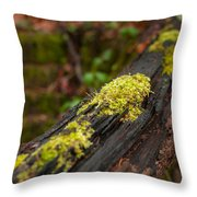 Forest Woods Throw Pillow