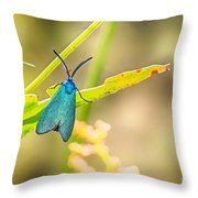 Forester Moth From Bulgaria Throw Pillow