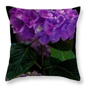 Forever Violet Throw Pillow