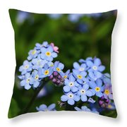 Forget Me Not 1 Throw Pillow