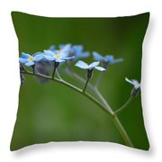 Forget-me-not 2 Throw Pillow