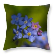Forget Me Not 2 Throw Pillow