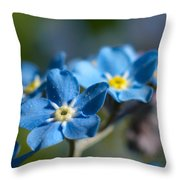 Forget -me-not 3 Throw Pillow