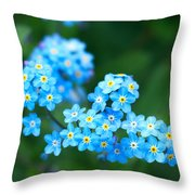 Forget -me-not 4 Throw Pillow