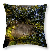 Forget-me-nots 1 Throw Pillow