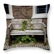 Forgotten Bench Throw Pillow