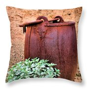 Forgotten Bucket Throw Pillow